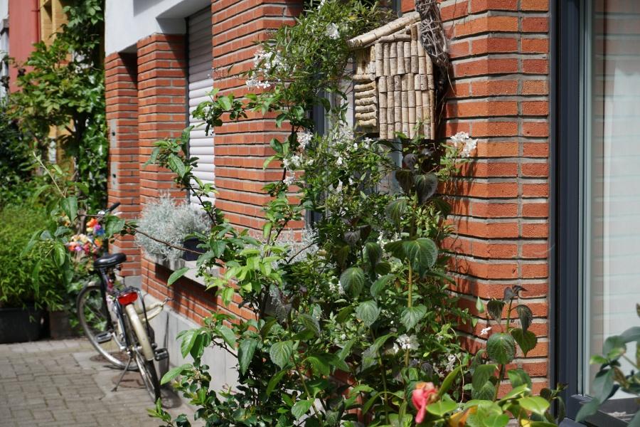 Fahrraeder und Blumen an jeder Ecke