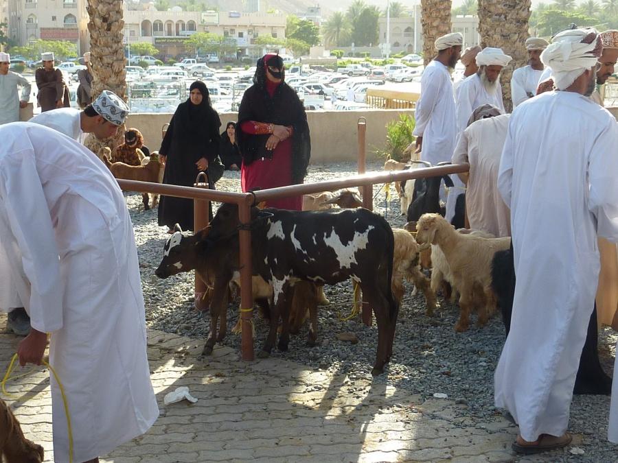 Frauen beim Handeln auf dem Tiermarkt in Nizwa