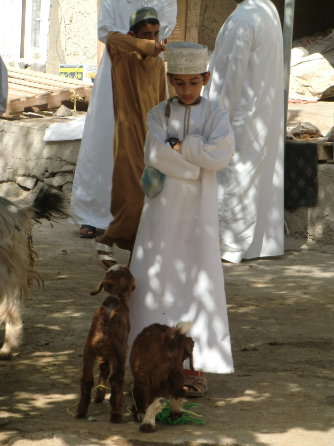 Junge mit seinen Ziegen beim Tiermarkt in Bahla