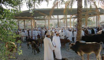 Tiermarkt in Nizza Oman
