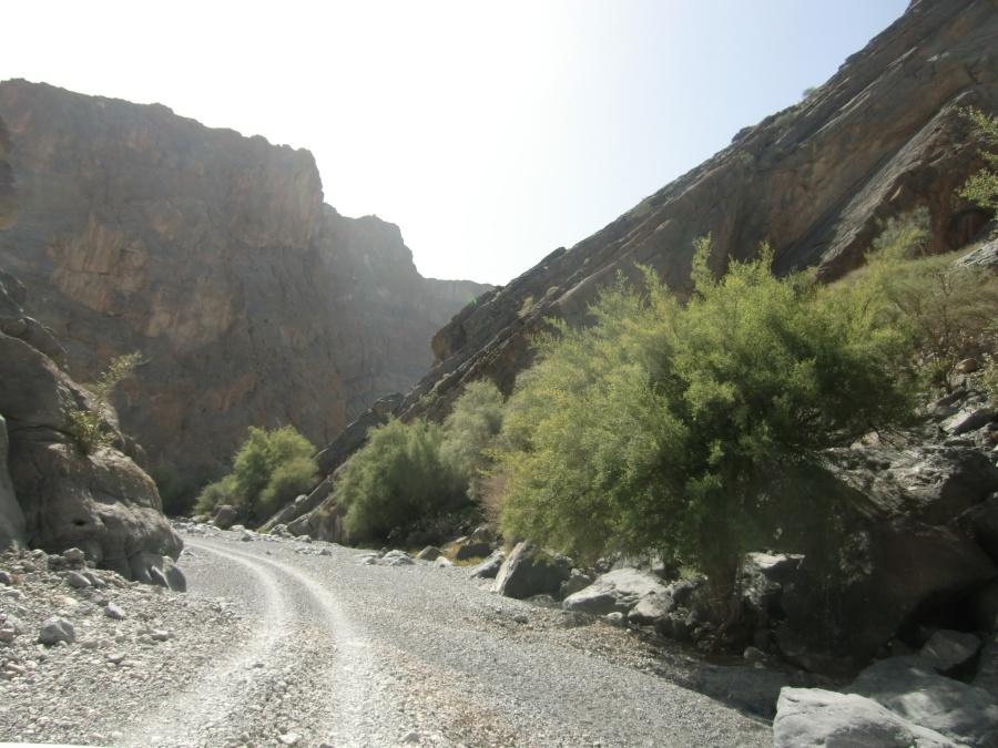 Fahrt durch ein Wadi im Oman