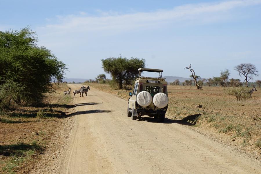 Safarifahrzeug in der Serengeti in Tansania