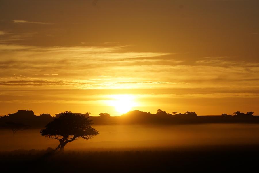 Unglaublicher Sonnenaufgang in der Serengeti in Tansania