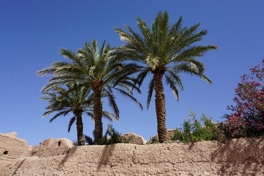Die Oase Garmeh am Rand der Dasht-e Kavir