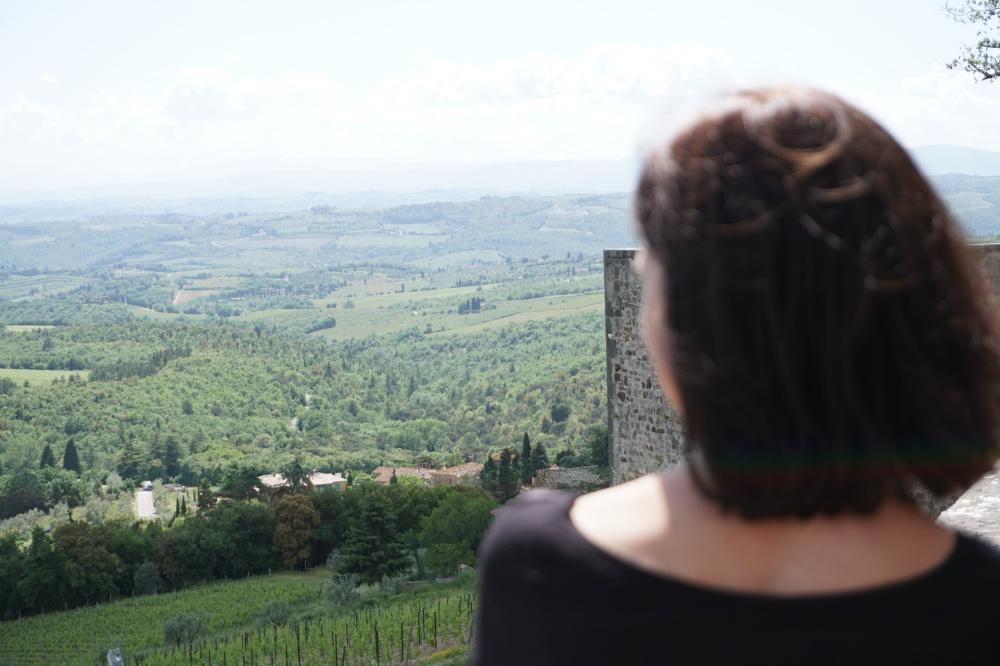 Ausblick vom Castello di Brolio auf die Weinberge und Landschaft der Toskana