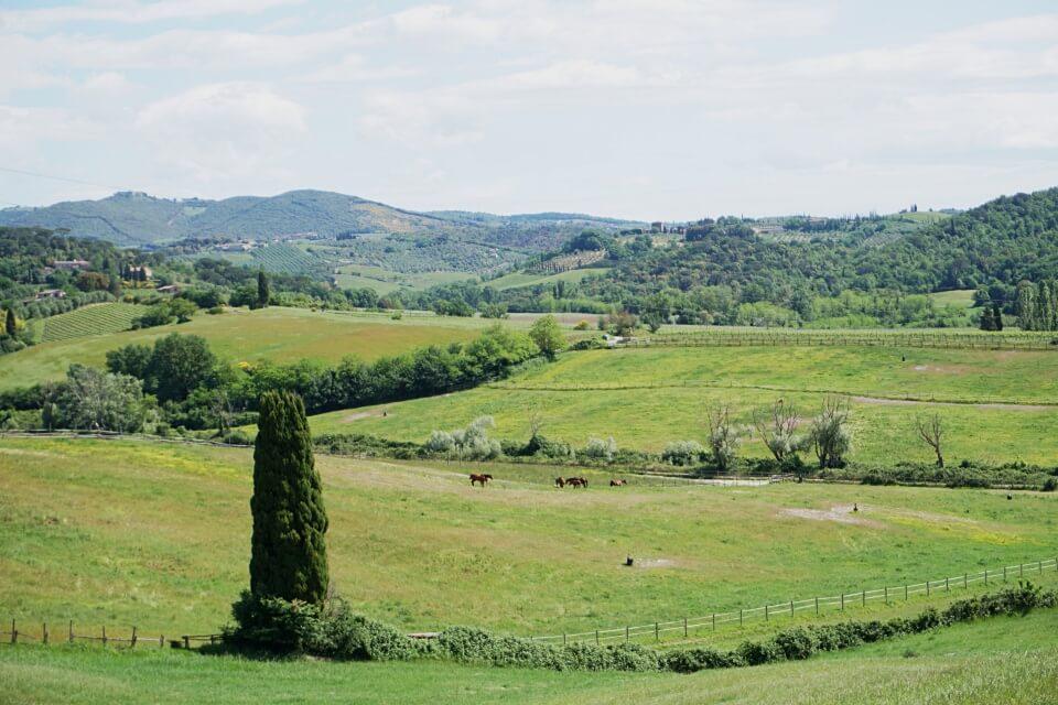 Wunderbare Landschaft des Val d Orcia in der Toskana