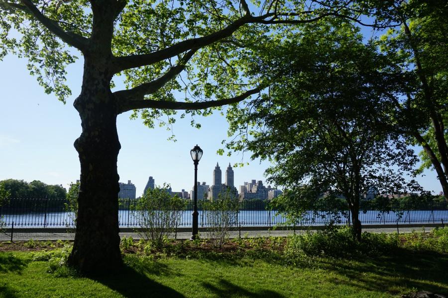 Central Park Ausblick