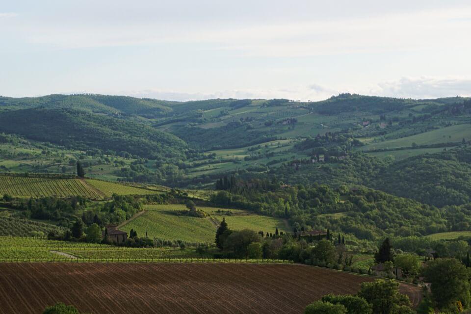 Landschaft des Val d Orcia suedlich von Siena