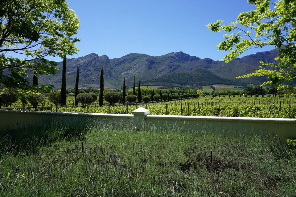 Wunderschoene Ausblicke von jedem Weingut in Franschhoek