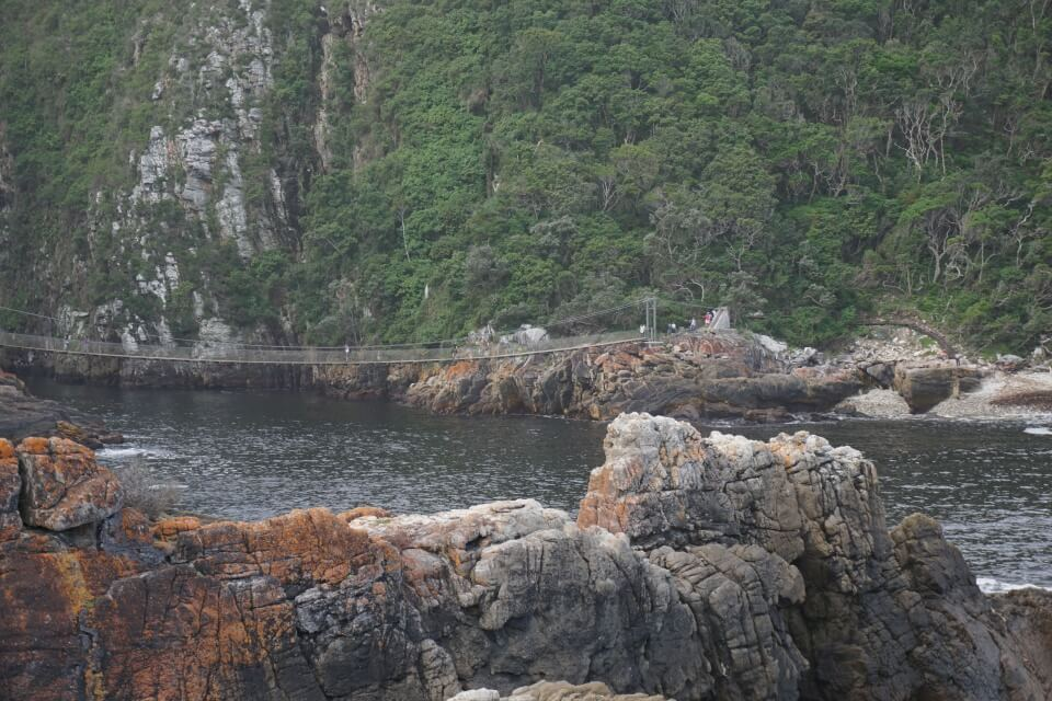 Die Suspension Bridge im Tsitsikamma Nationalpark an der Garden Route in Suedafrika