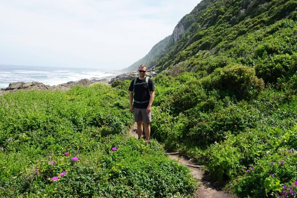 Fynbos in Suedafrika an der Garden Route im Tsitsikamma Nationalpark