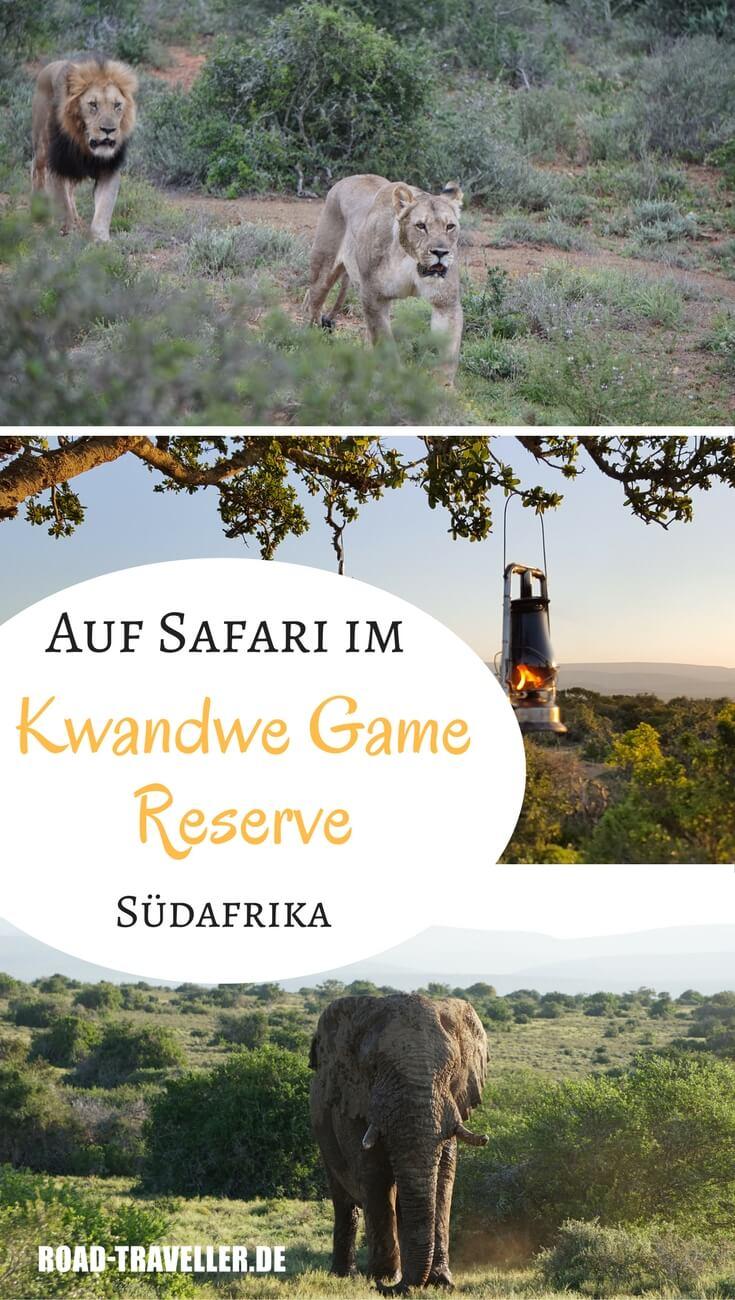 Auf Safari im Kwandwe Private Game Reserve in Südafrikas Eastern Cape - lohnt es sich?