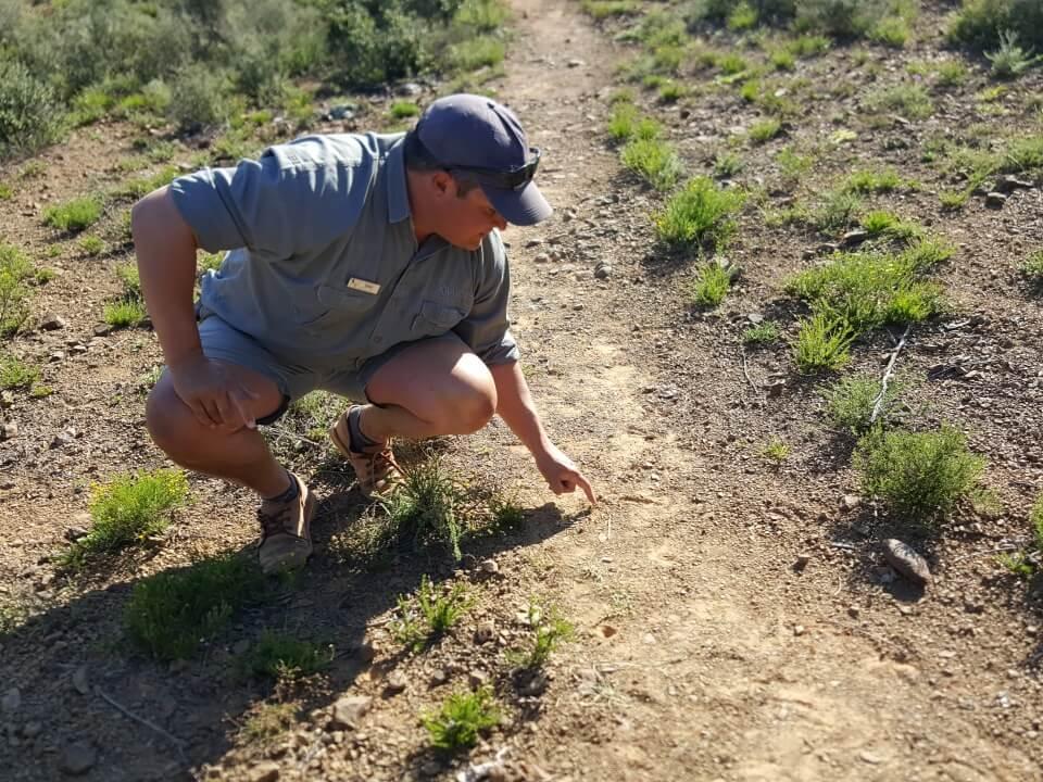 Auf Walking Safari im Kwandwe Private Game Reserve Suedafrika