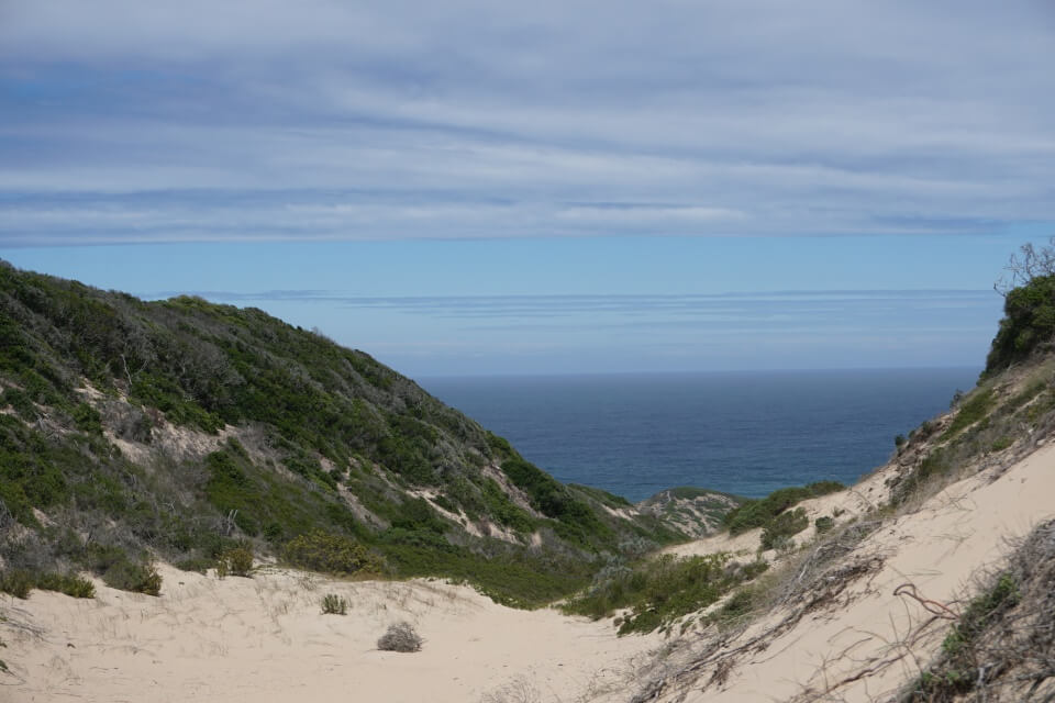 Trail The Witsand auf der Halbinsel im Robberg Nature Reserve
