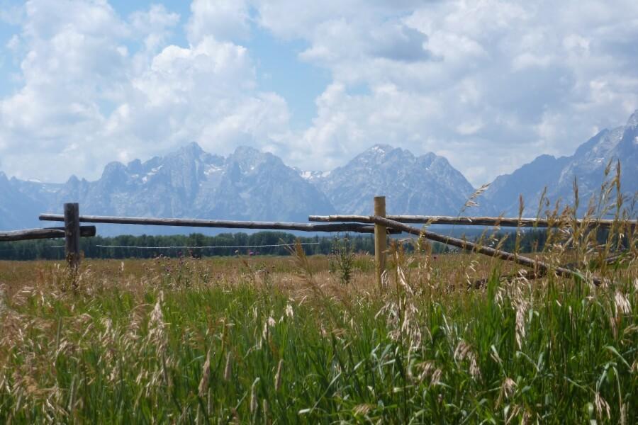Ausblick auf die Grand Teton Range