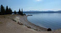 Wandern am Yellowstone Lake