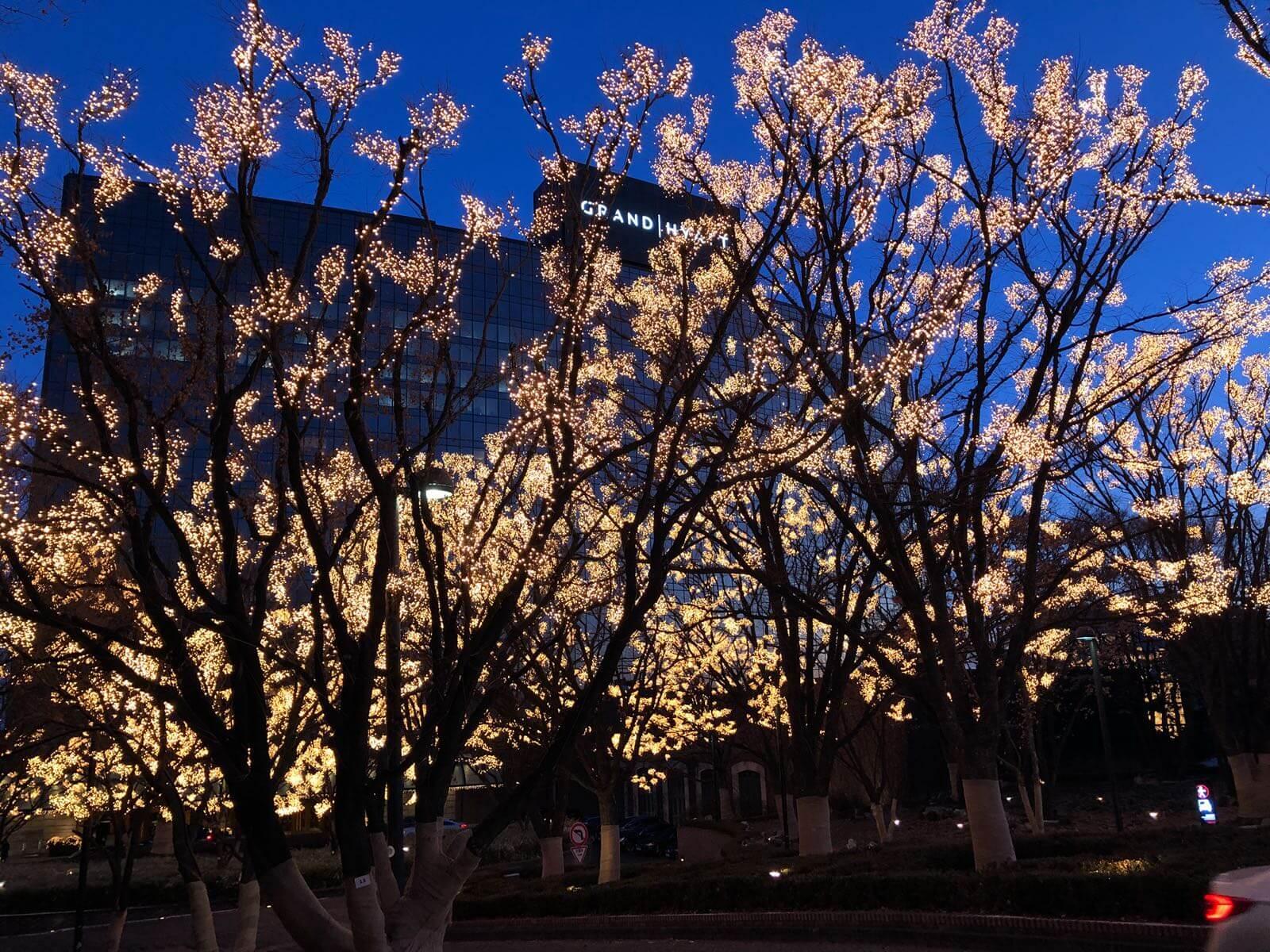 Seoul im Winter - Beste Reisezeit Suedkorea