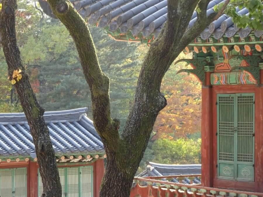 Herbst in Seoul Suedkorea