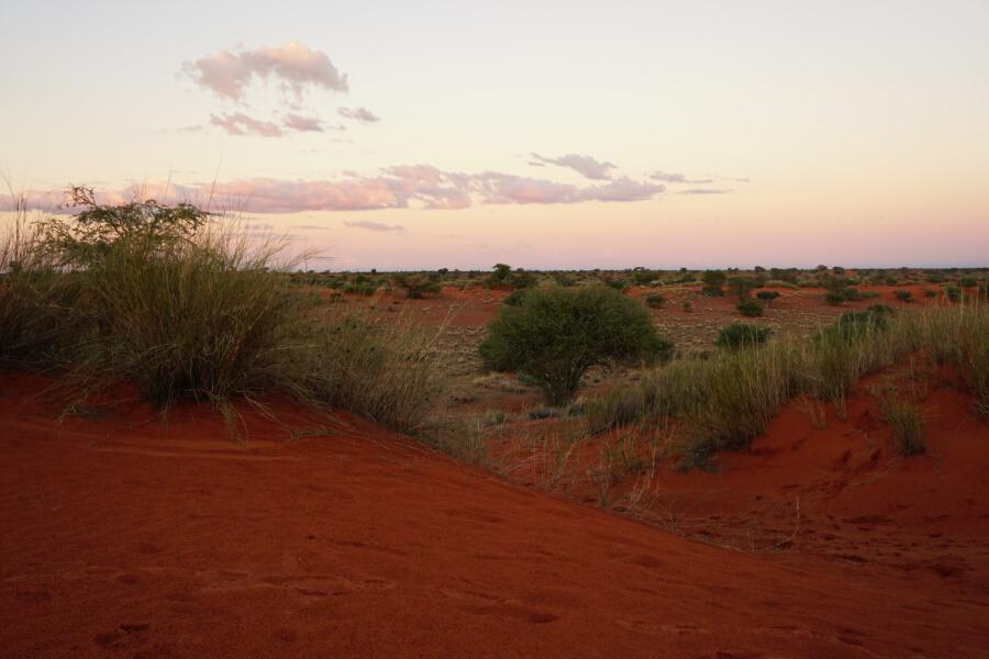 Sonnenuntergang auf der Bagatelle Kalahari Game Ranch