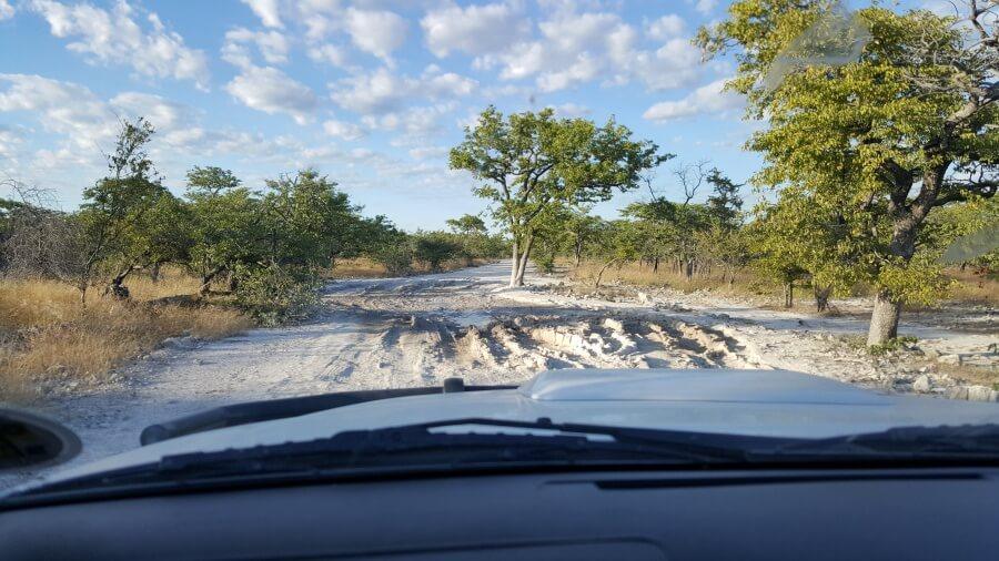 Piste im Etosha Nationalpark Namibia