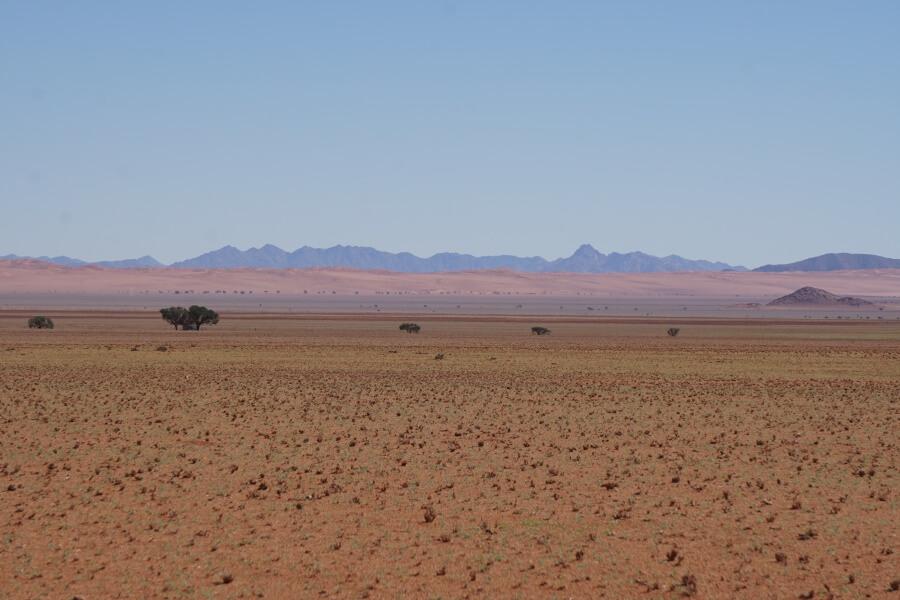 Farbenspiele im Namib Rand Reservat