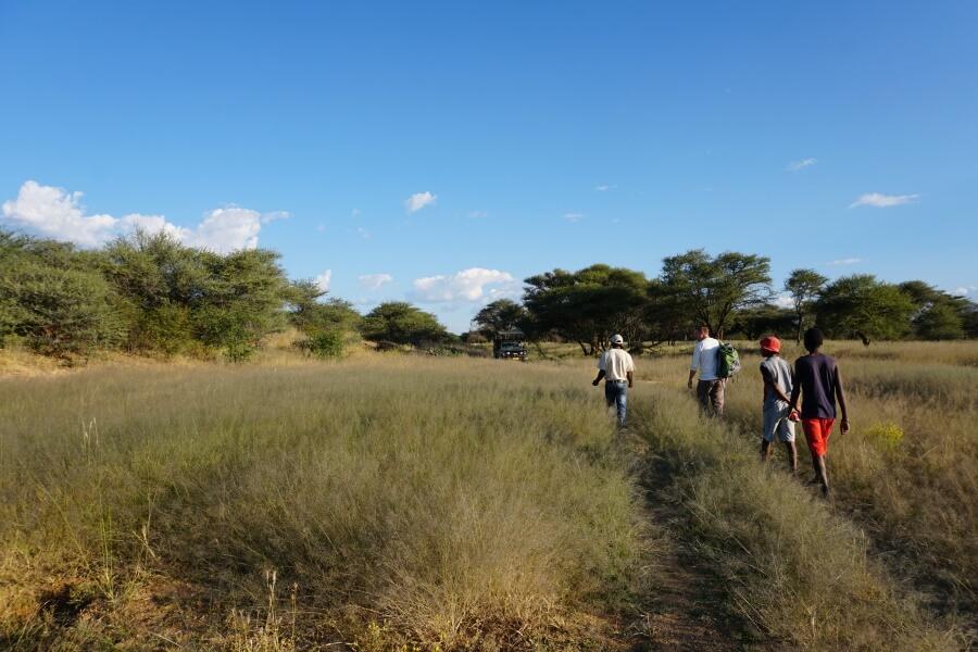 Auf der Farm Okosongomingo