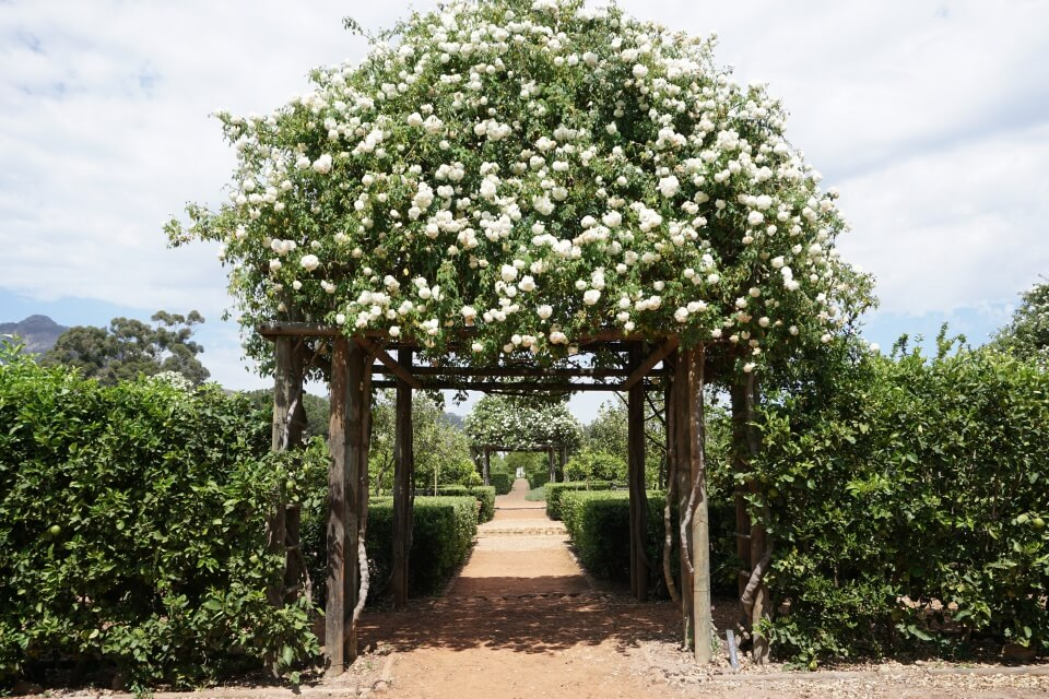 Garten der Farm Babylonstoren in den Cape Winelands Suedafrika