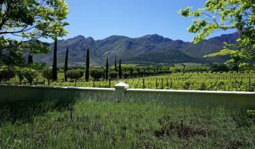 Franschhoek Wine Tram - ein perfekter Tag in Suedafrikas Weinland