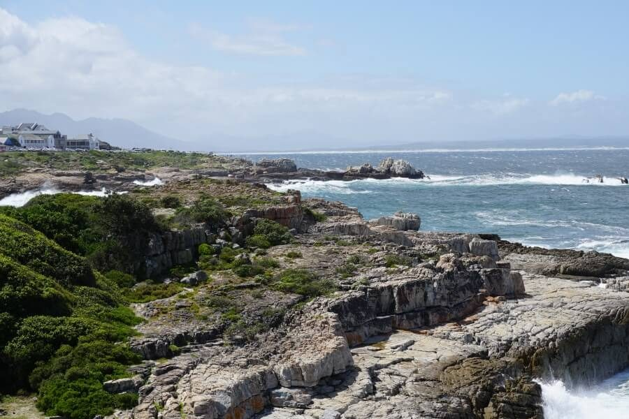 Vom Cliff Path in Hermanus an der Garden Route in Suedafrika lassen sich Wale beobachten