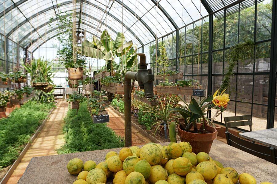 Greenhouse Restaurant und Gewaechshaus auf Babylonstoren in Suedafrika