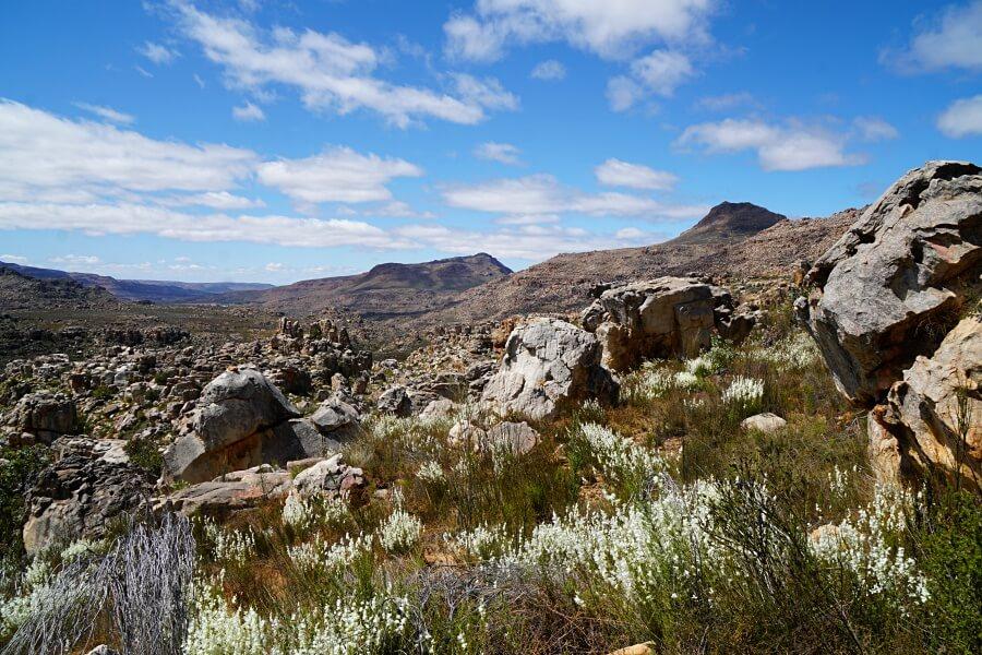 Natur pur in den Cederbergen auf unserem Westkuesten Roadtrip durch Suedafrika