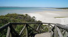 Der West Coast Nationalpark in Suedafrika - Wildblumen und Karibik-Feeling