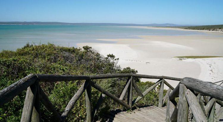Der West Coast Nationalpark in Suedafrika - Wildblumen und Karibik-Feeling