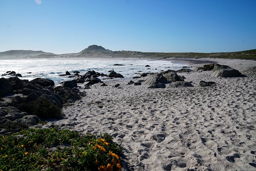 Strand an der Atlantikkueste im West Coast Nationalpark Suedafrika