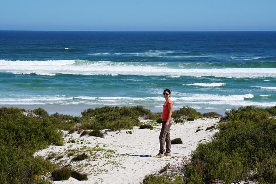 Atlantic Viewpoint im West Coast Nationalpark in Suedafrika