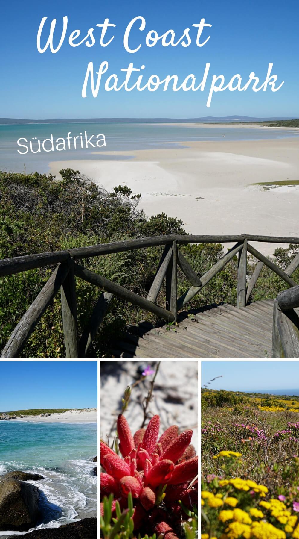 Ein traumhafter Tag im West Coast Nationalpark an Südafrikas Westküste