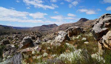 Wandern in den Cederbergen in Suedafrika
