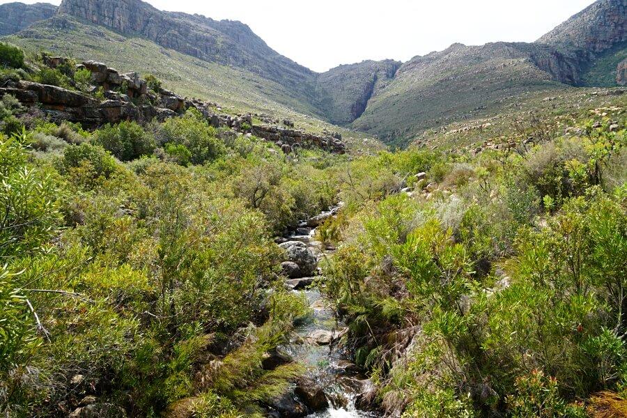 Wanderung zum Wasserfall bei der Algeria Forest Station in den Cederbergen