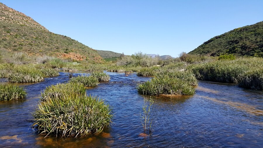 Der Olifants River in den Cederbergen bei Clanwilliam