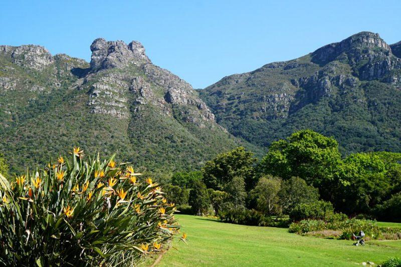 Kirstenbosch Botanical Garden in Kapstadt Suedafrika