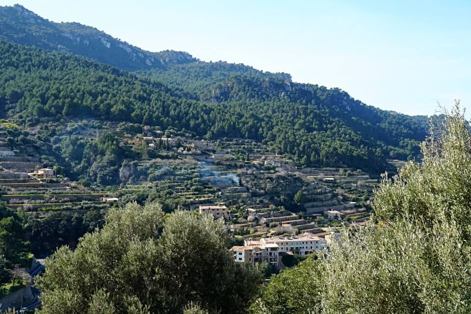 Terrassengaerten in Banyalbufar auf Mallorca