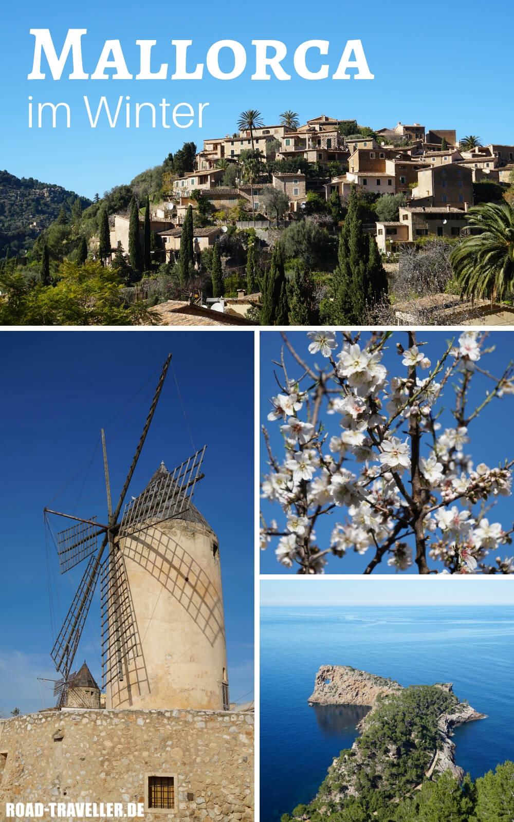 Mallorca im Winter zur Mandelbluete erleben - unsere Tipps und Highlights