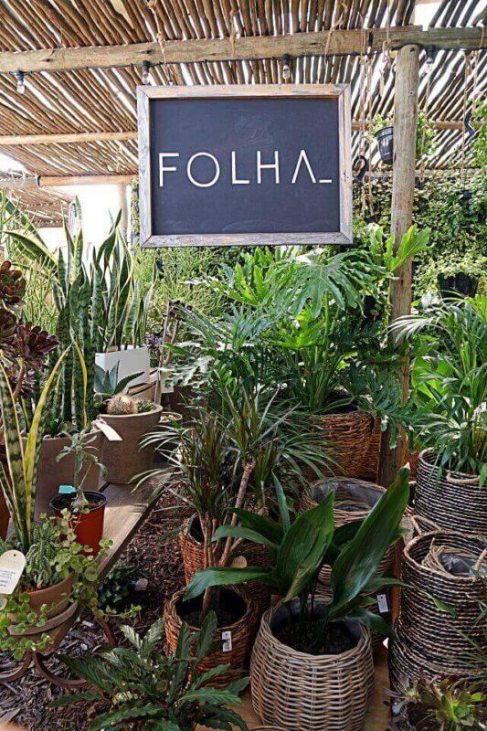 Pflanzen und Dekoration auf dem Oranjezicht City Farm Market Kapstadt