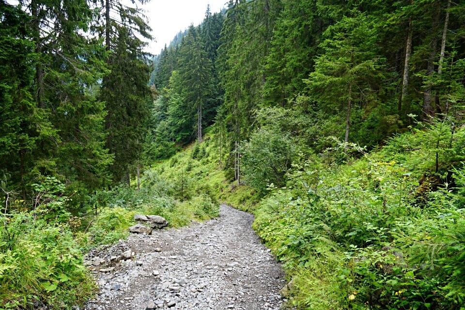 Steinig steiler Wanderweg durch den Wald auf den Monte Lussari in Italien
