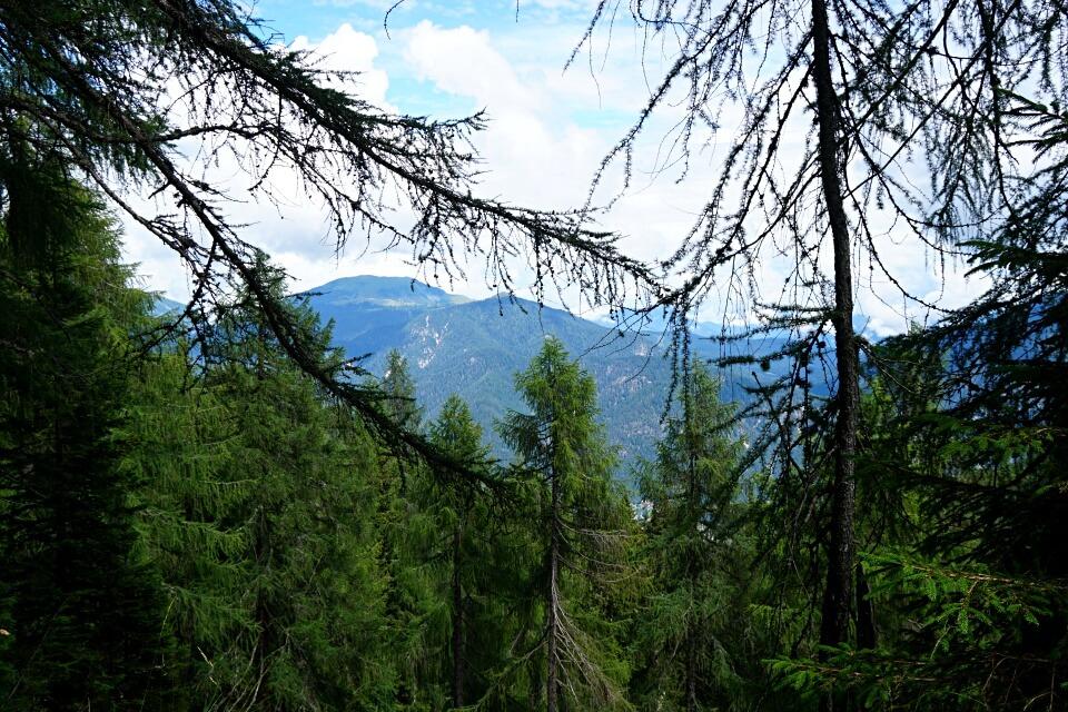 Erste Ausblicke vom Monte Lussari als sich der Wald lichtet