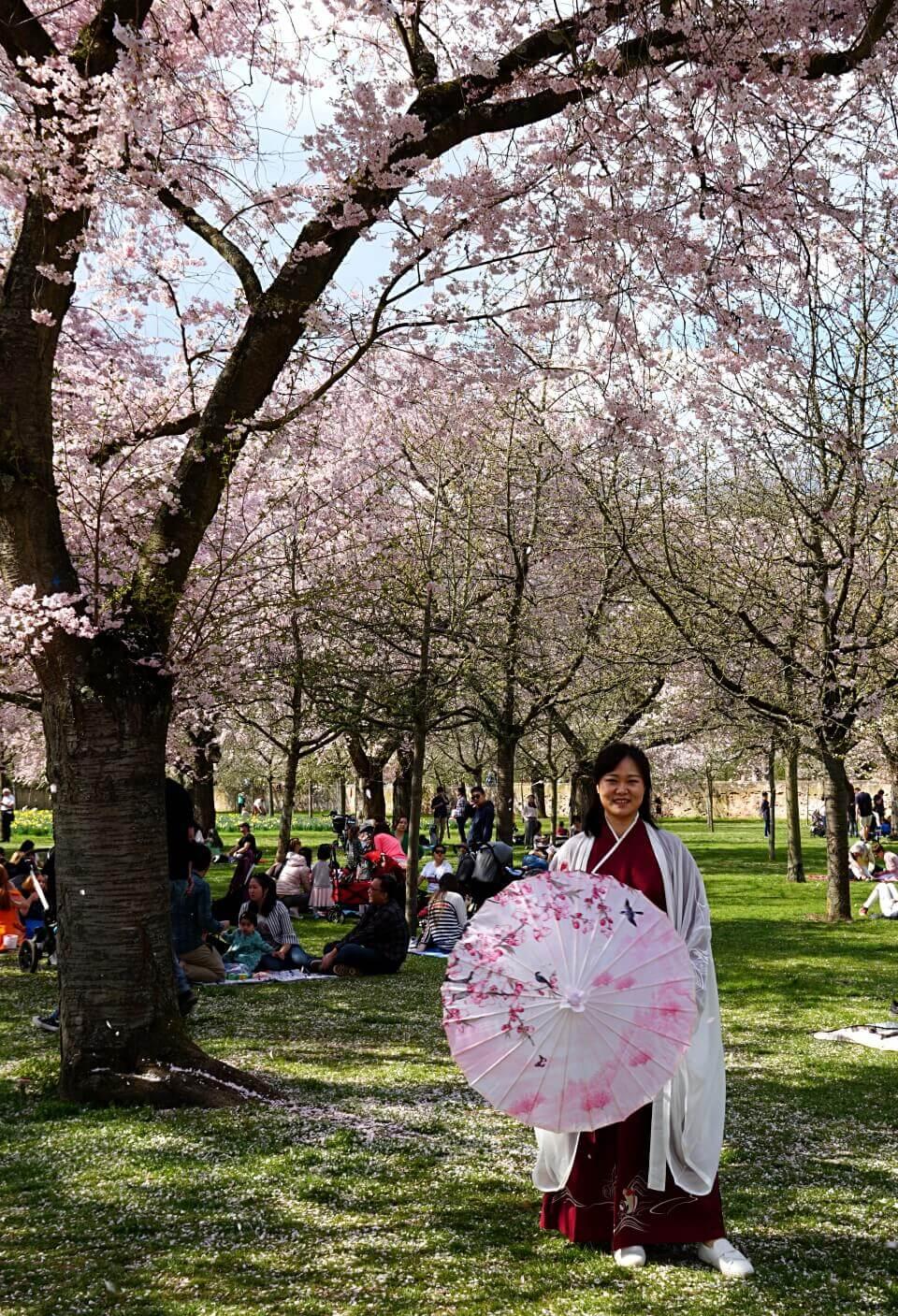 Eine kunterbunte Mischung an Kulturen bei der Kirschbluete im Schlossgarten Schwetzingen