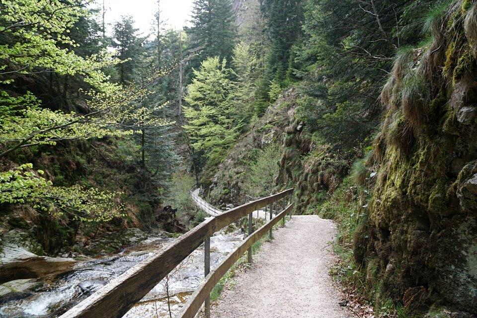 Wandern entlang der Allerheiligen Wasserfaelle im Nordschwarzwald
