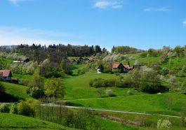 Wandern und Genuss im Schwarzwald