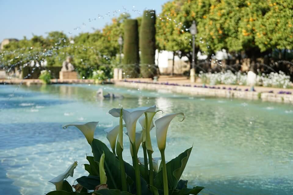 Wasserspiel im Alcazar de los Reyes Cristianos in Cordoba