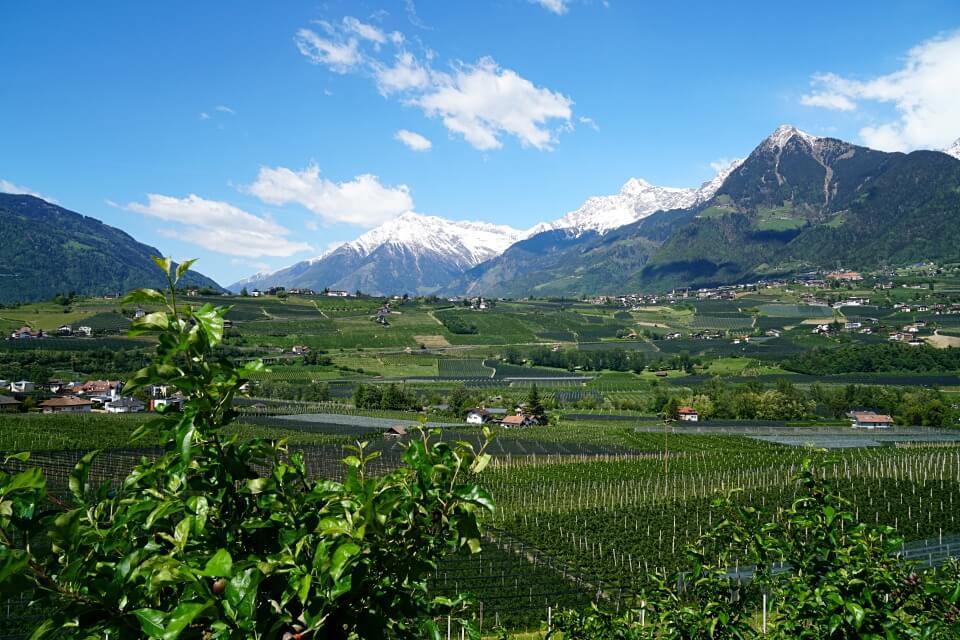 Genießertage in Südtirol: Wandern, Wein und Waale
